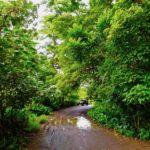 ワイピオ渓谷を巡る